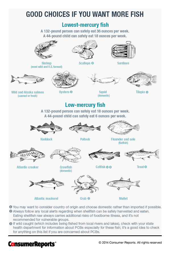 Low mercury and high mercury fishes consumer reports for What fish is safe to eat