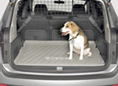 Pets And Car Safety Driving With Pets Consumer Reports