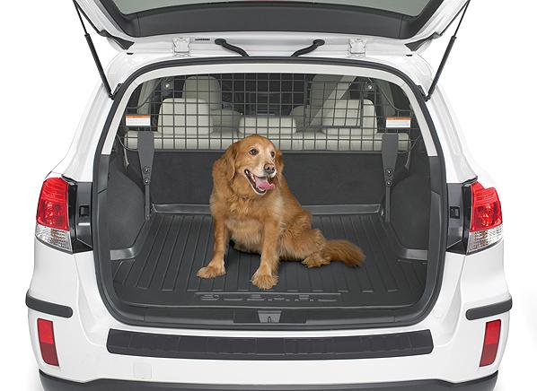 Can You Bring Your Dog To Subaru