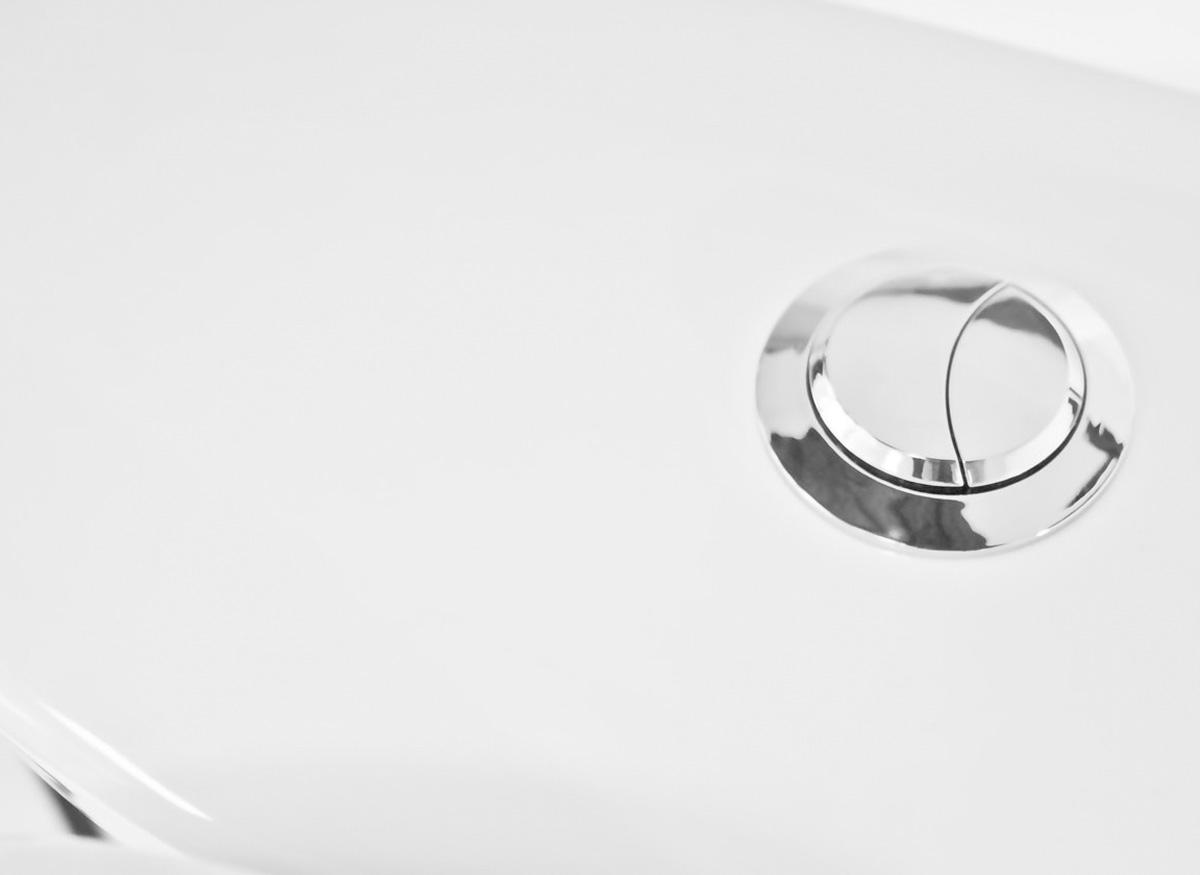 Photo of a dual-flush technology button