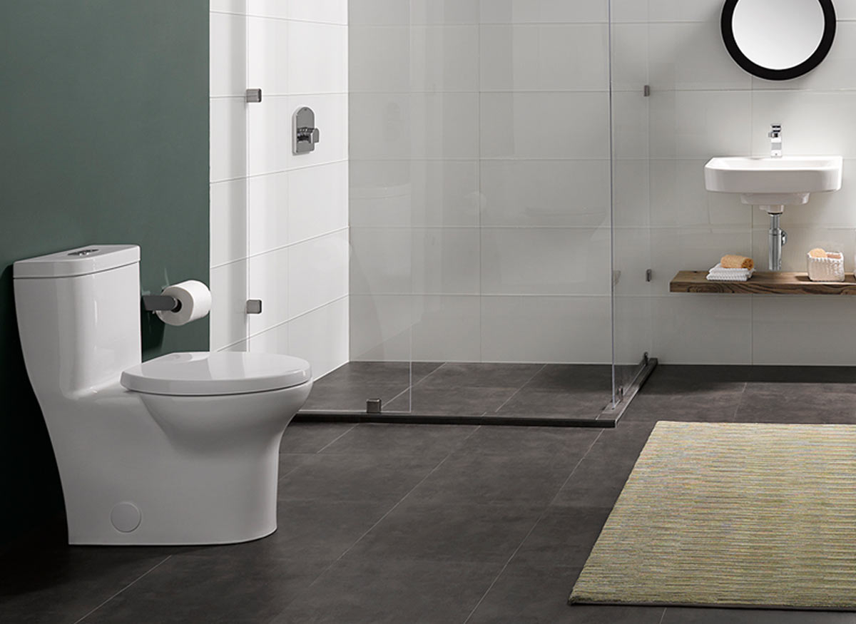 Photo of a toilet that has a one-piece design.