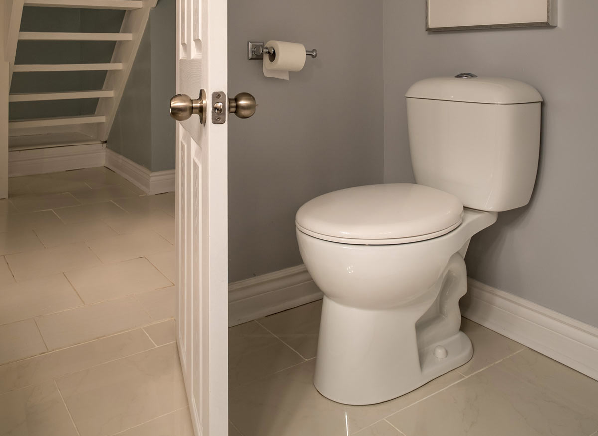 Skirted Toilets With Concealed Trapways Best Toilet Buying