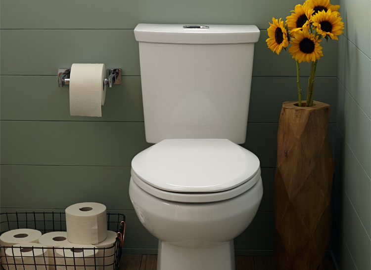 American Standard's UHET dual-flush water-saving bathroom toilet is one of the new efficient bathroom fixtures on the market.