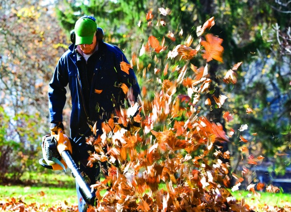 Fall Backyard Cleanup : Lawn Gear for Fall Cleanup  Outdoor Power Equipment Reviews