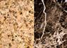 Countertops image