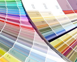 Interior Paints Review By Consumer Reports